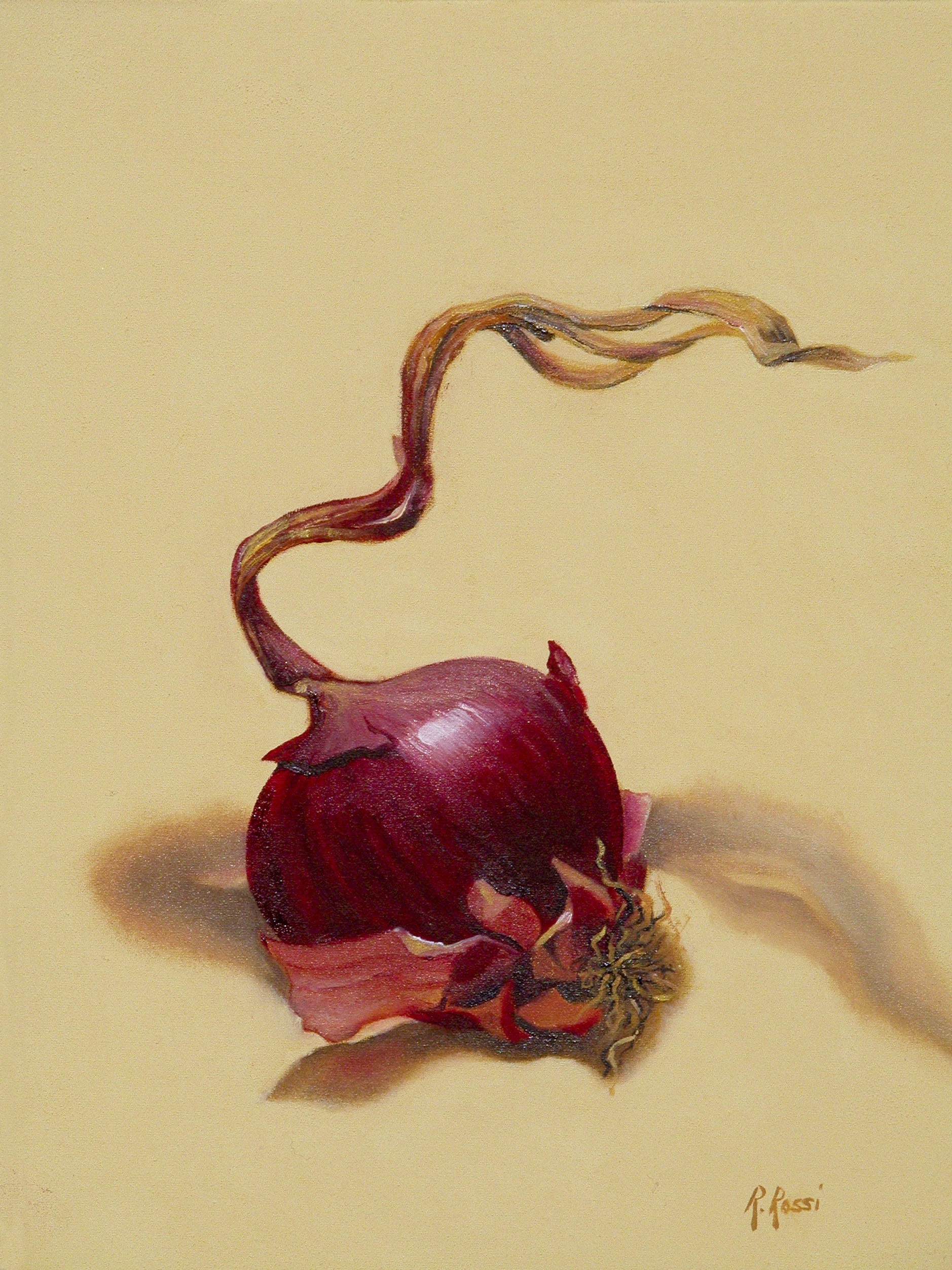 2007 roberta rossi - Cipolla rossa - olio su tela - 24 x 18