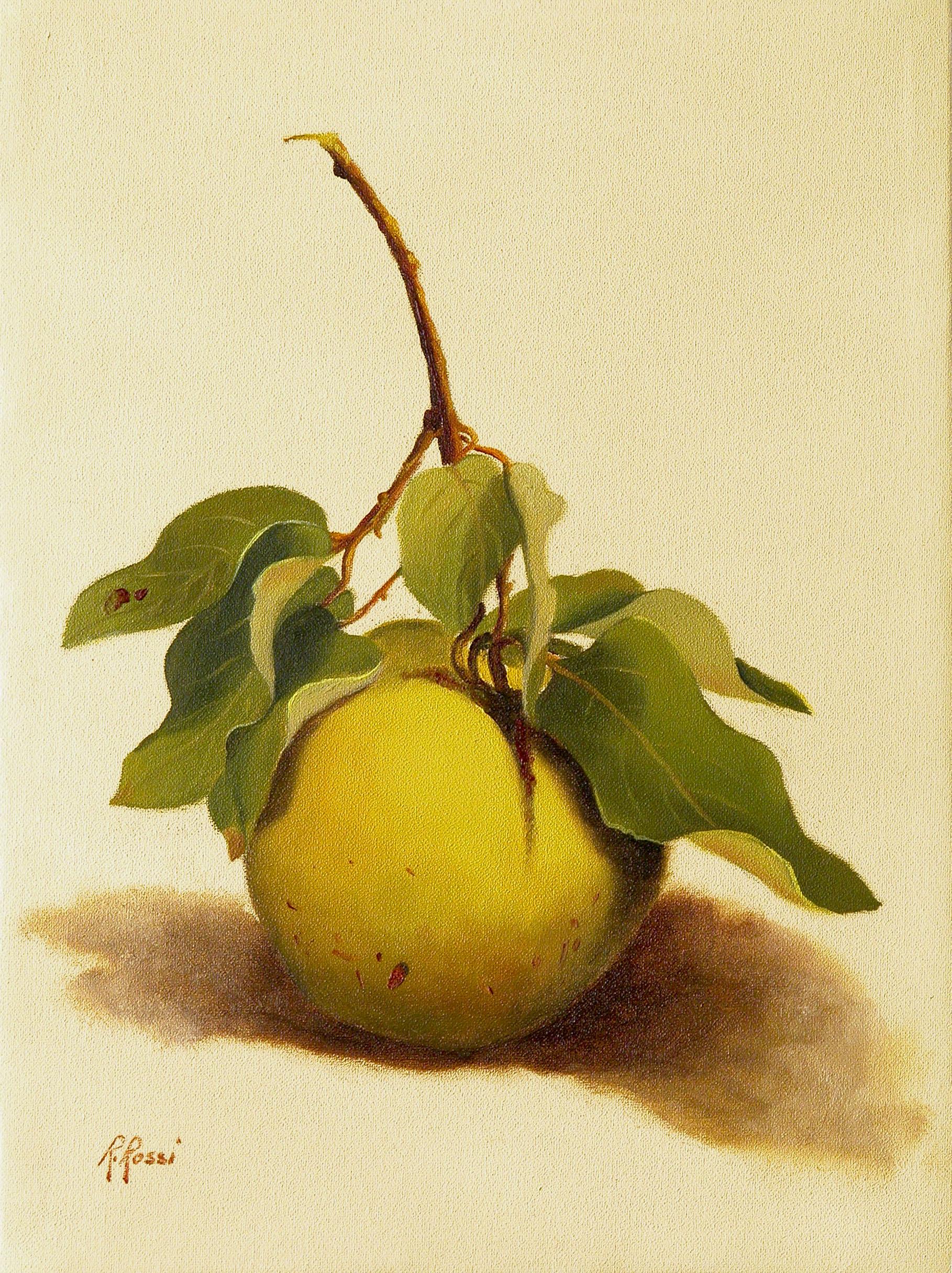 2007 roberta rossi - Grossa mela cotogna - olio su tela - 24 x 18