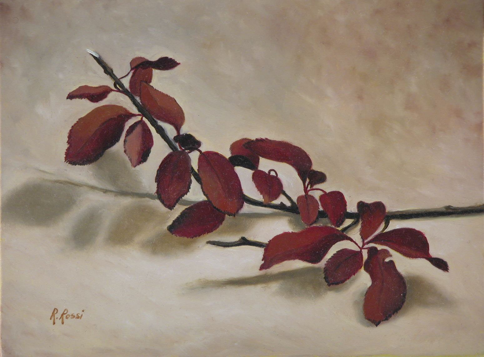 2008 roberta rossi - Rametto - olio su tela - 18 x 24