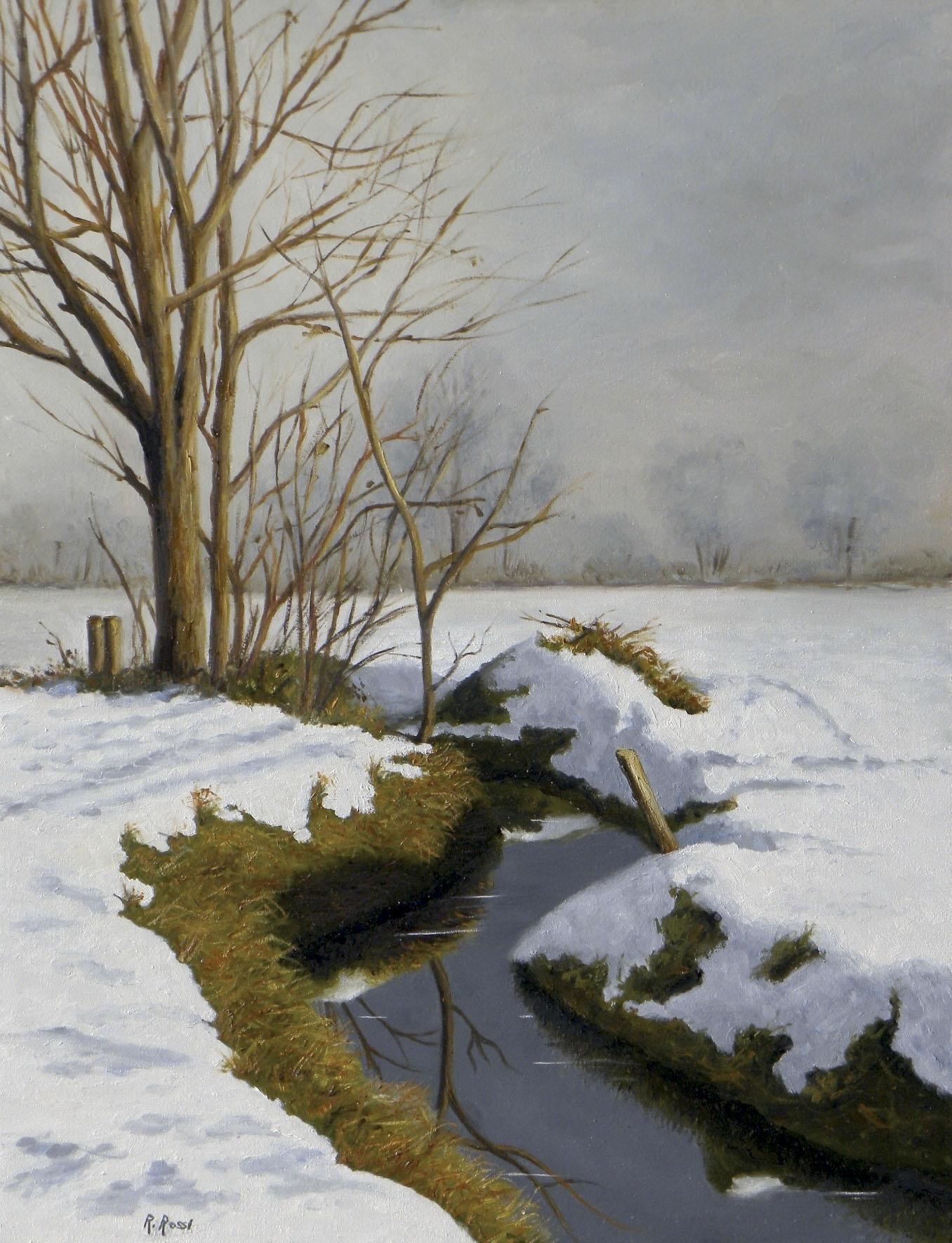 2009 roberta rossi - Dopo la nevicata - olio su tela - 46 x 35