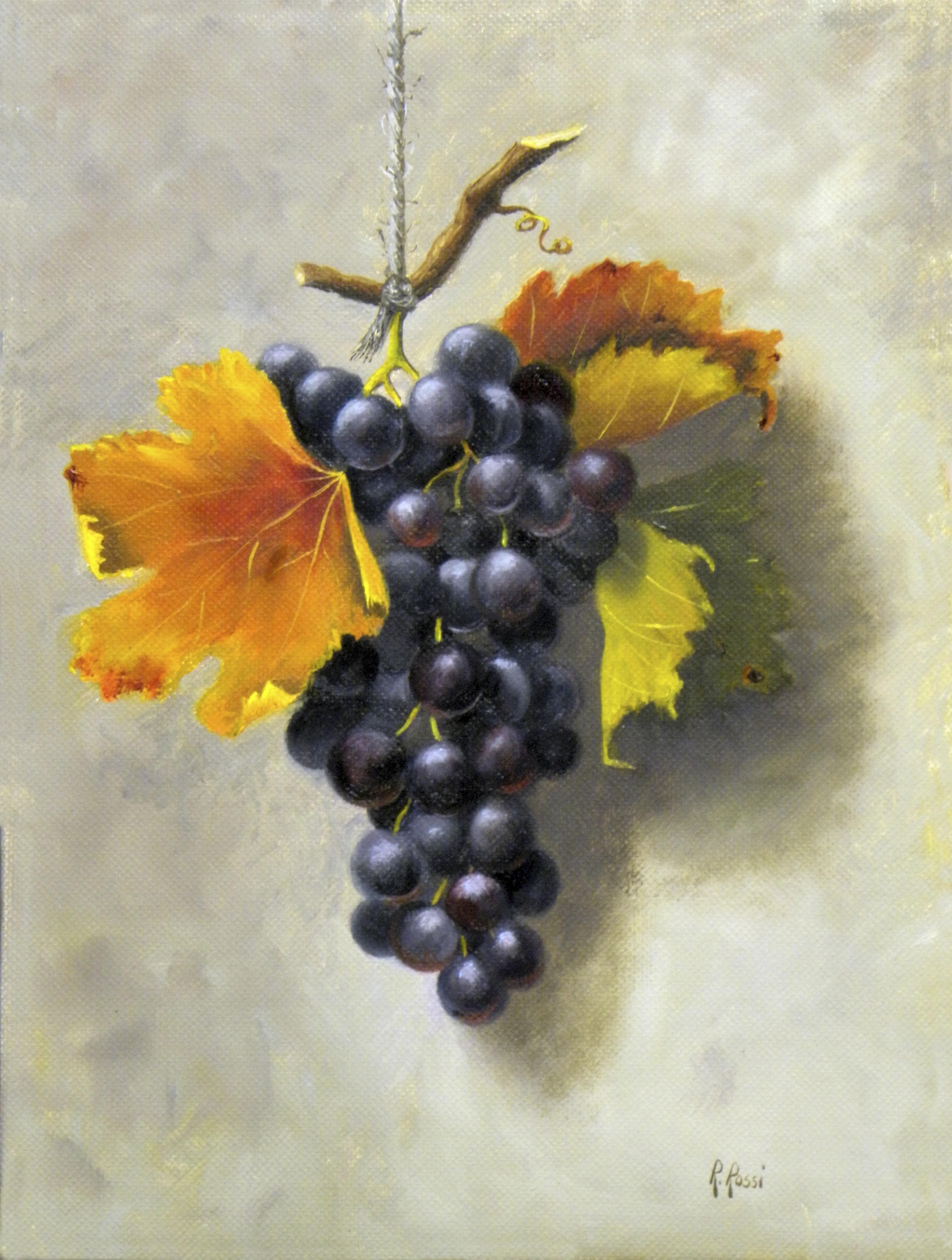 2012 roberta rossi – il grappolo appeso – olio su tela – 24 x 18